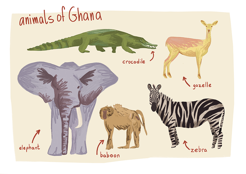 animals_of_ghana_1