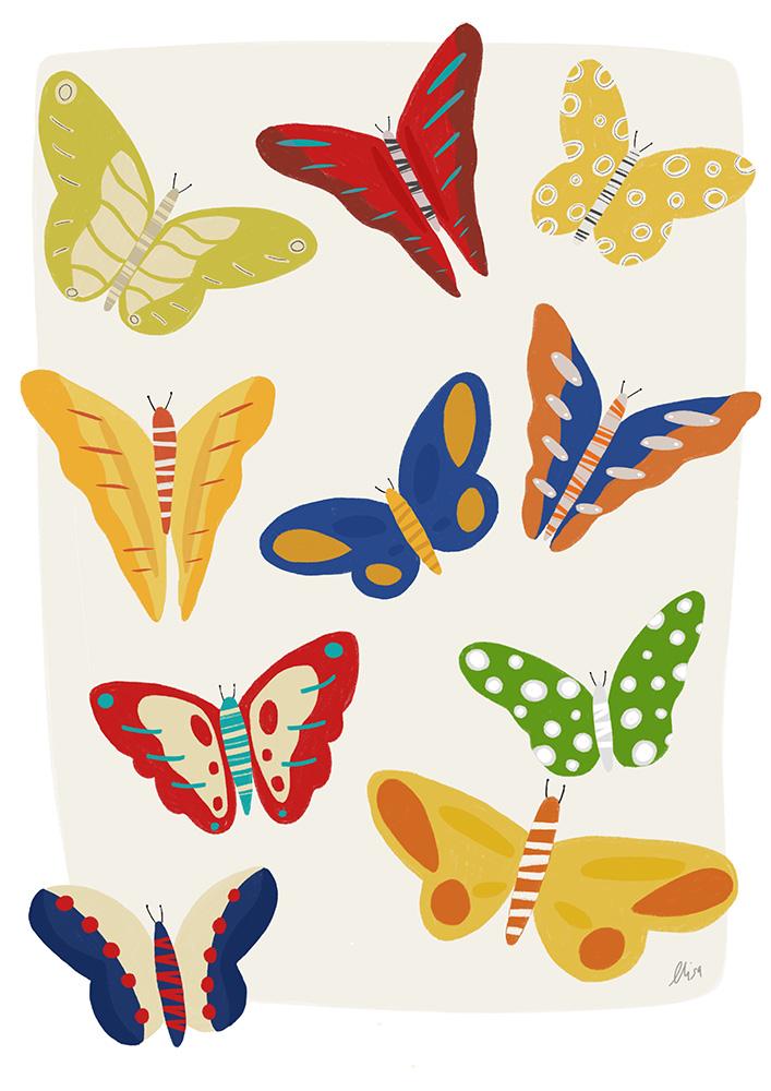 african_butterflies